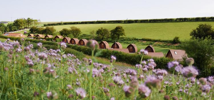 Back to Nature at Award-Winning Glamping Site