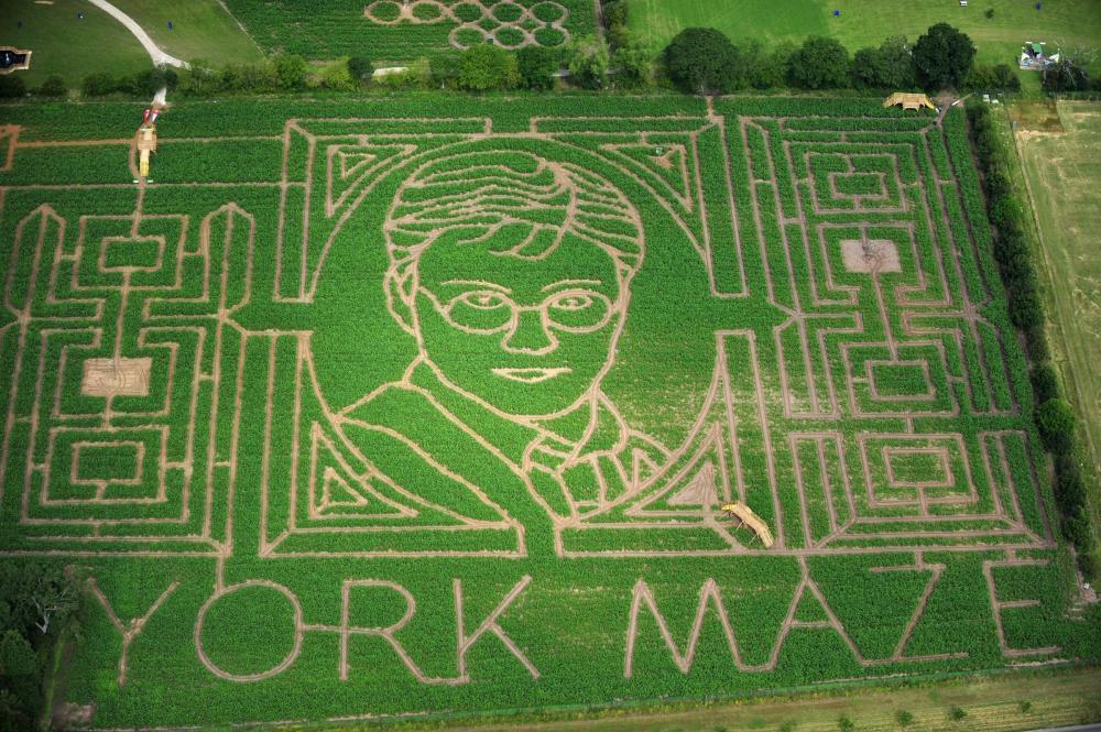 York Maze What2do Where2go